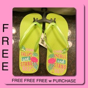 Shoes - FREE w Purchase Flamingo Flip Flops Pink Green NWT